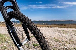 View thru bike wheel on beech