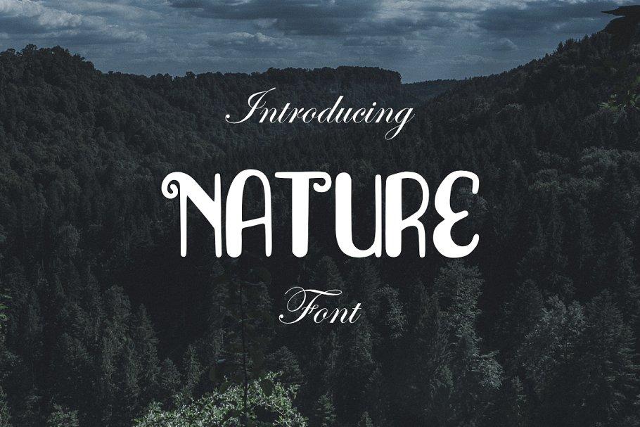 Nature Font Display Fonts Creative Market