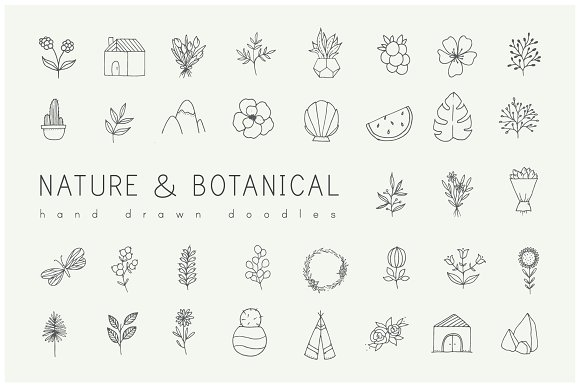Hand Drawn Nature Plants Doodles