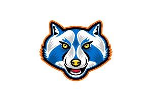 North American Raccoon Mascot