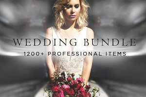 1200+ Wedding Bundle PS | LR items