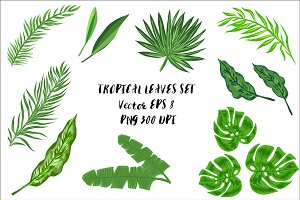 Rainforest Tropical Leaves set