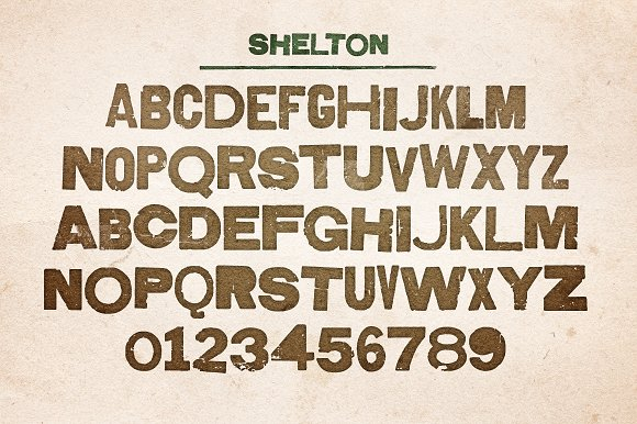 Shelton in Display Fonts - product preview 3
