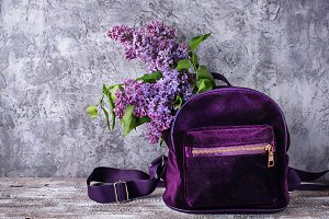 Violet backpack and lilac flower