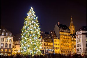 """Christmas tree in Strasbourg, """"Capital of Christmas"""". 2014 - Als"""