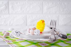 small yellow chick and decorative