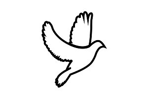 Dove icon (pigeon). black on white