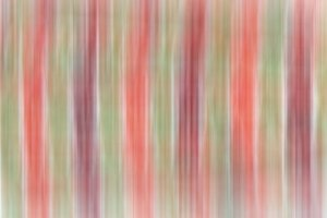 Multicolored background stripes.