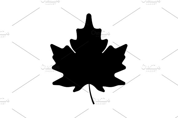 Maple Leaf Icon Black On White