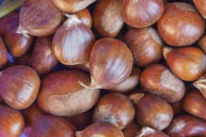chestnuts food background