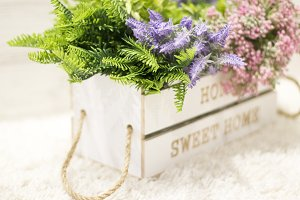 Flowers in a white wooden box.