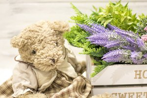 Flowers in a wooden box and bear