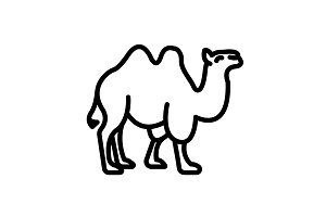 Web line icon. Camel&#x3B; wild animals