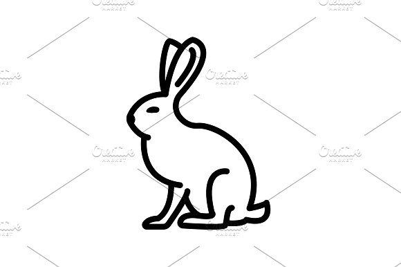 Web Line Icon Hare Rabbit Black