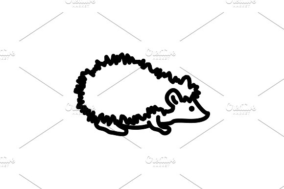 Web Line Icon Hedgehog Wild Animal