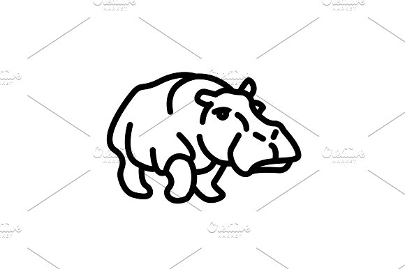 Web Line Icon Hippo Wild Animals