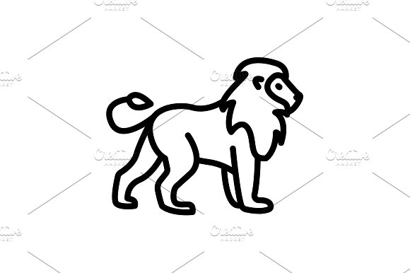 Web Line Icon Lion Wild Animals