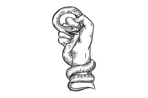 Snake in hand fist engraving vector illustration