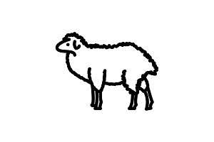 Web line icon. Sheep, livestock
