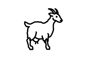 Web line icon. Goat, livestock black