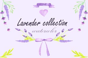 Lavender Collection watercolor