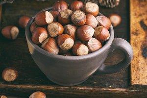 hazelnut in a shell