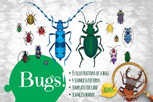 Bugs!!! Kit Of Vector Elements.