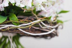 Summer floral concept
