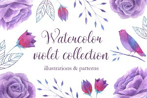 Watercolor violet collection