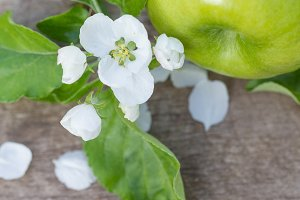 green apples with flowers on a wooden background
