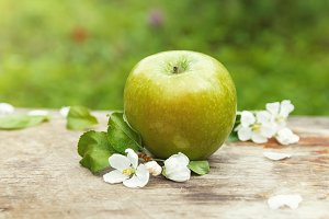 Fresh sweet juicy spring green apple with flowers