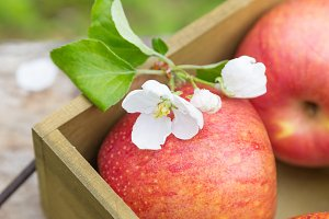 red apples with flowers on a wooden background