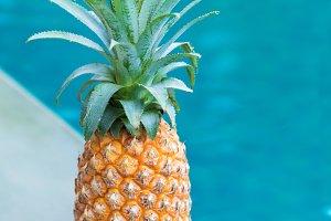 pineapple tropic fruit summer refreshment pool