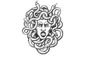 Medusa greek myth creature engraving vector