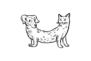 Cat dog fake animal engraving vector illustration