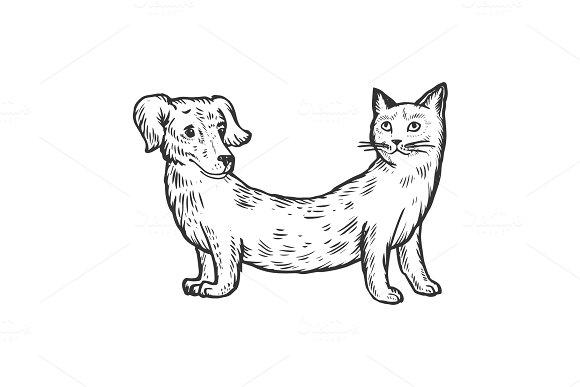 Cat Dog Fake Animal Engraving Vector Illustration