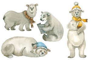 Polar bear set
