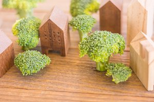green town of broccoli tree