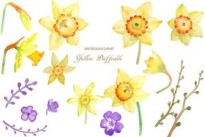 Watercolor Clipart Yellow Daffodils