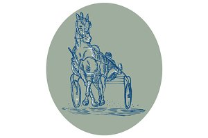 Horse and Jockey Harness Racing Etch