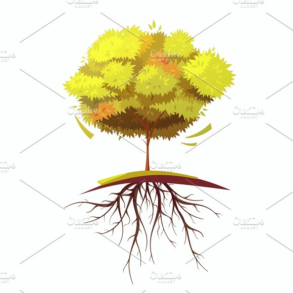 Single Autumn Cartoon Tree With Root