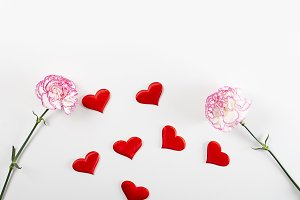 White and pink flower background next to hearts on white background. Copy space. Mockup.