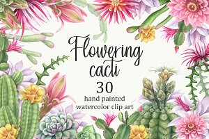 Watercolor flowering cacti.