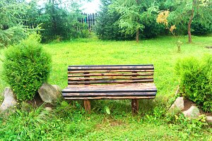 Wooden bench in the green park