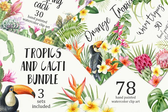 Tropical And Cacti Bundle