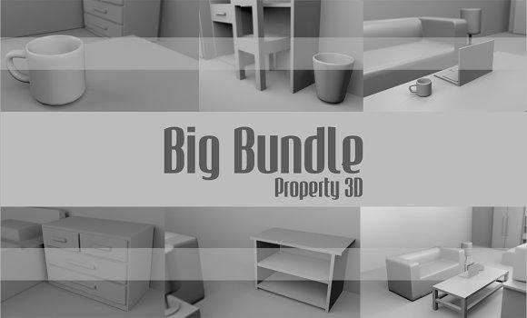 Big Bundle Property 3D