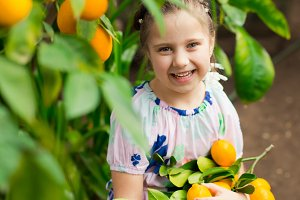 Beautiful little happy girl in colorful dress in lemon garden Lemonarium picking fresh ripe lemons in her basket