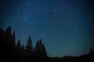 Dark blue night sky above forest