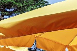 Yellow awning sun umbrella