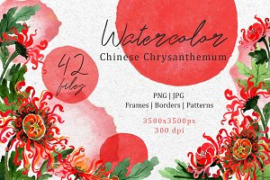 Chinese chrysanthemum PNG set